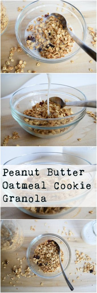 Peanut Butter Oatmeal Cookie Granola | Earth Powered Family