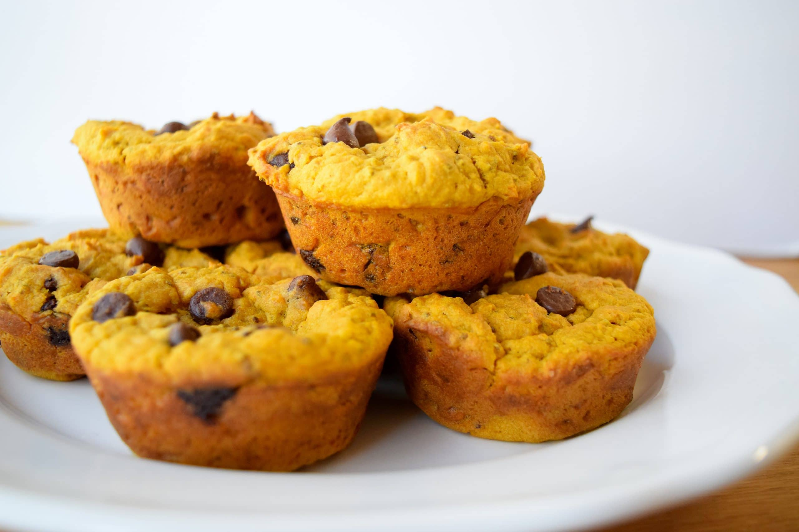 Chocolate Chip Pumpkin Muffins | Earth Powered Family